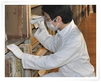 目視による虫菌害調査