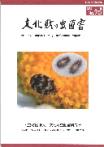 No70表紙